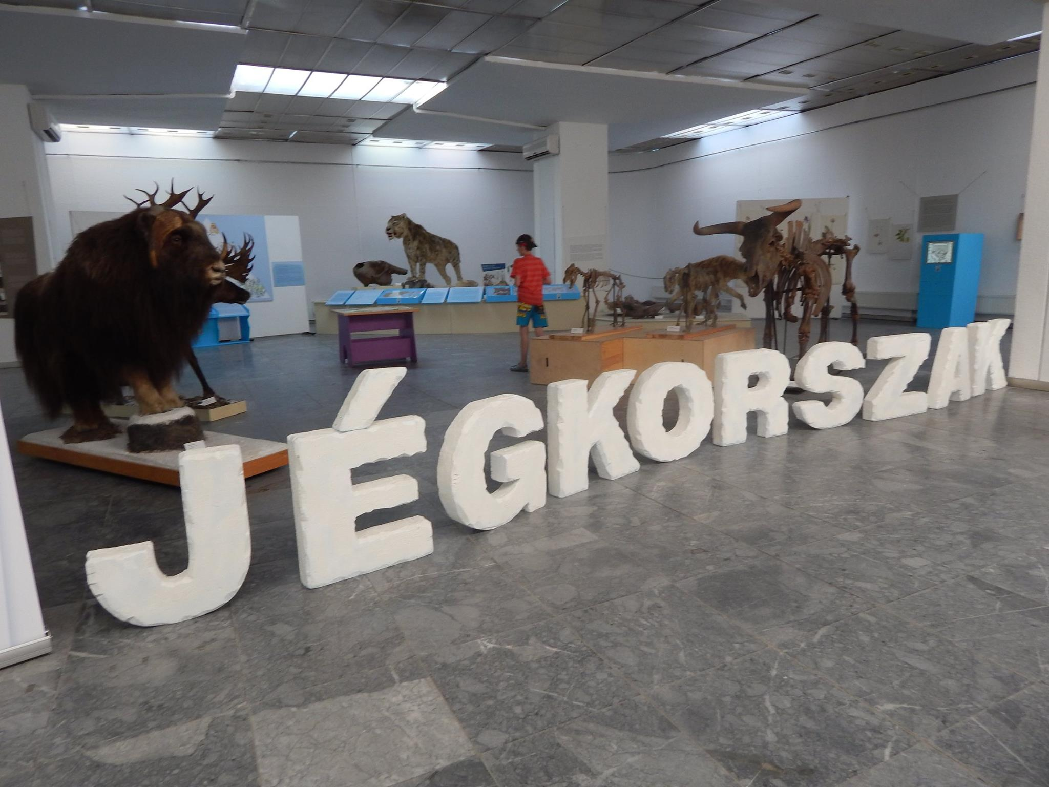 jegkorszak_Dornyay_Bela_Muzeum.jpg