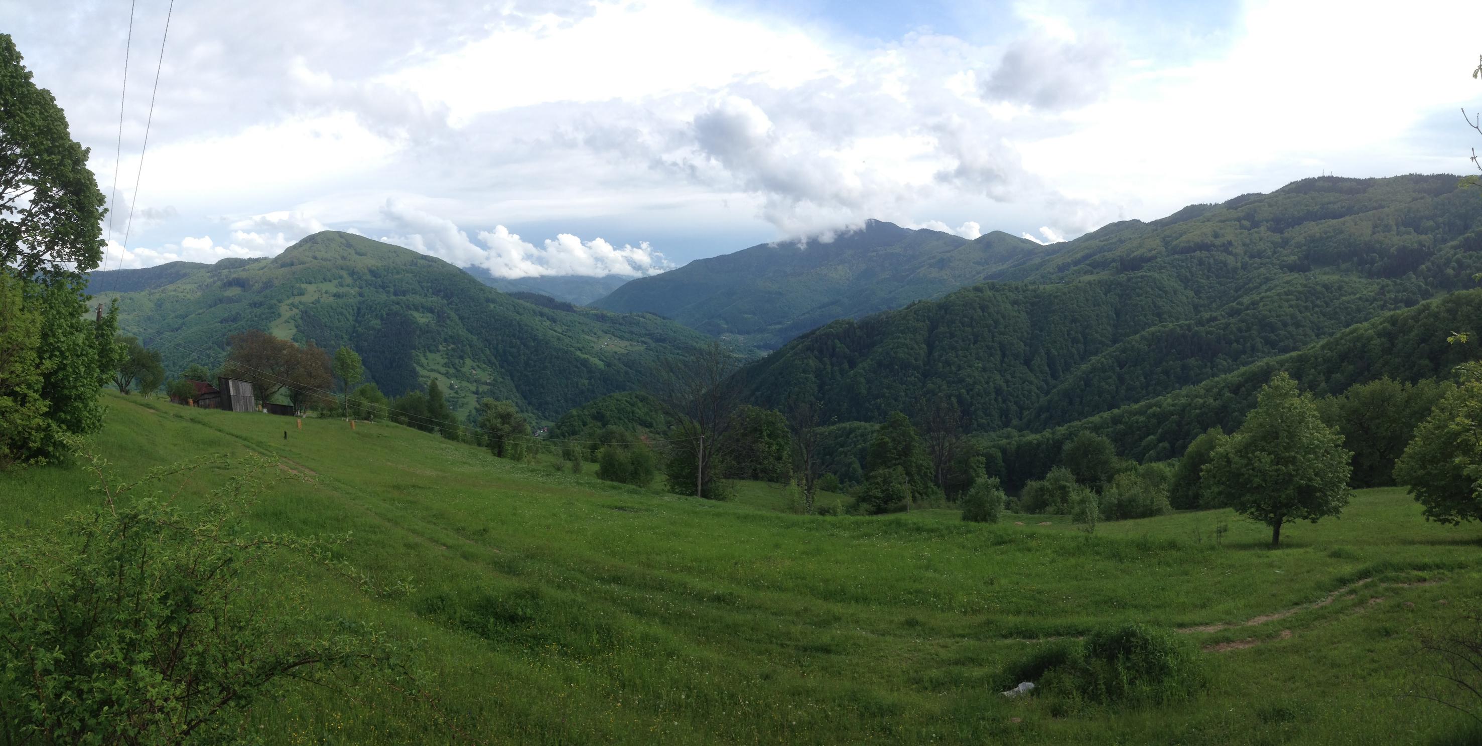 Őserdő Európa közepén