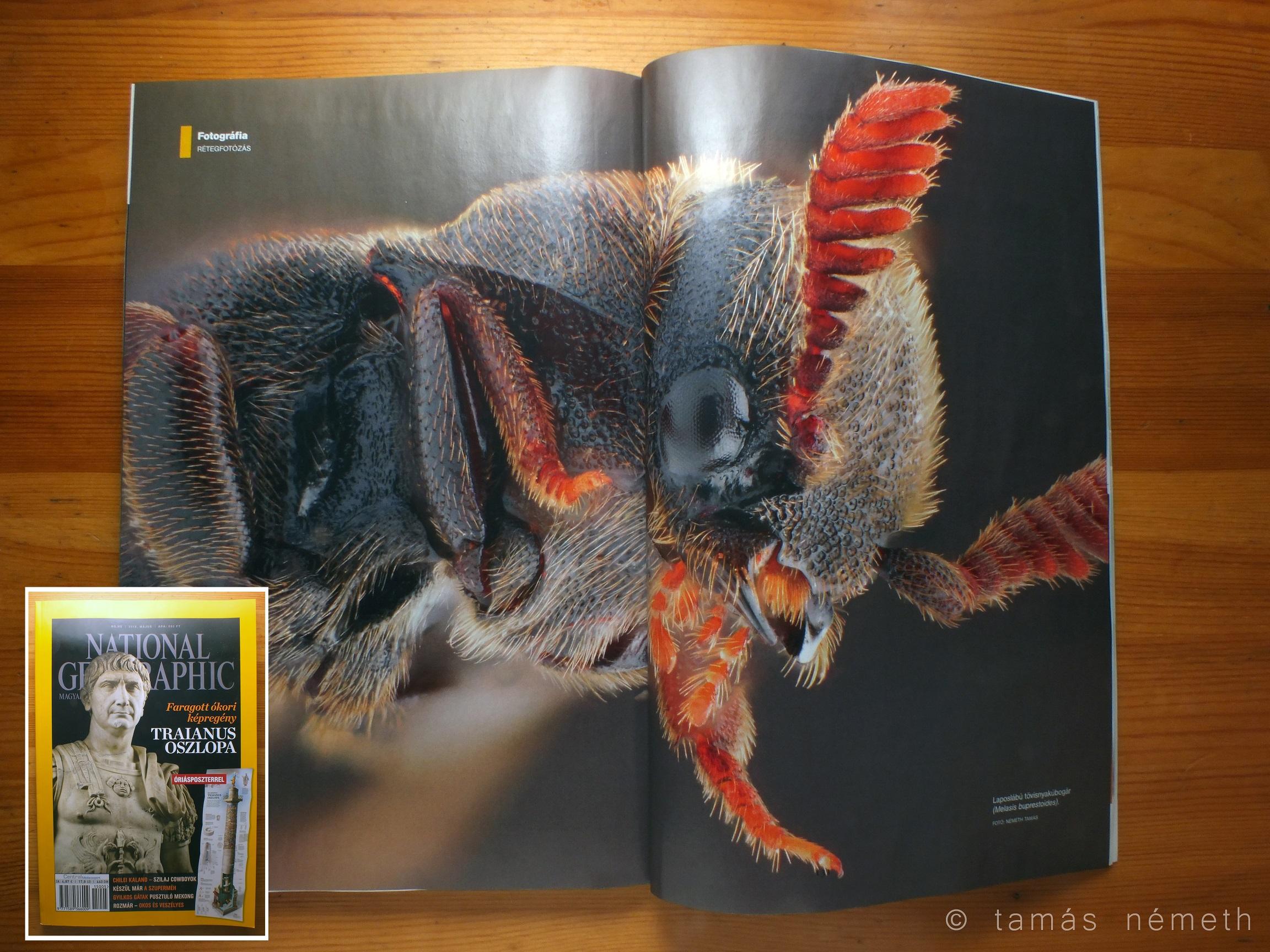 A rétegfotózás mélységei a National Geographic májusi számában