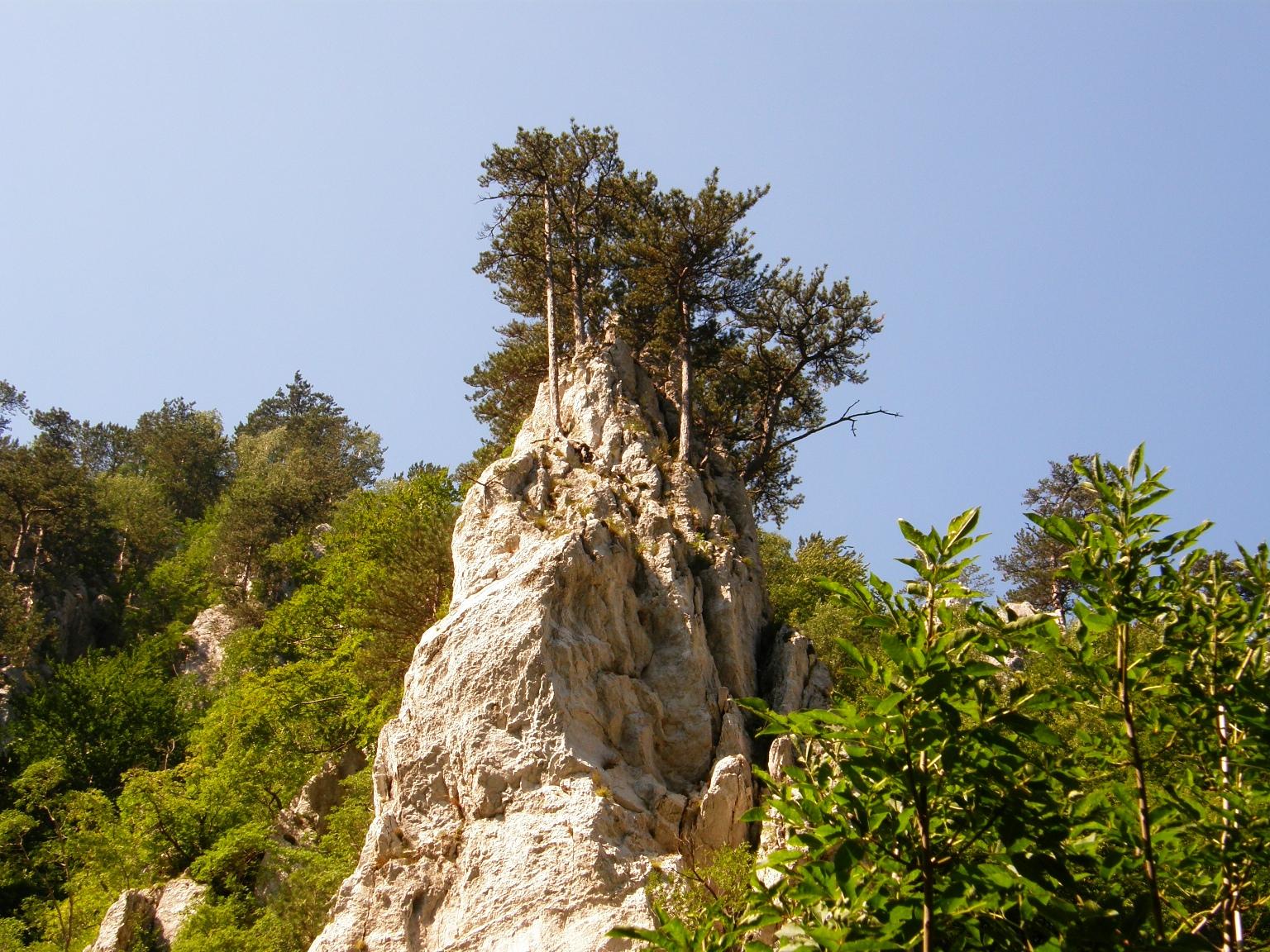 Herkulesfürdői emlékek, 2011 (fotó: Jókuthy Emese)