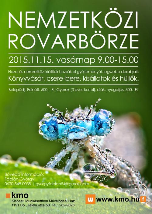 15-11-15_rovarborze_500px.jpg
