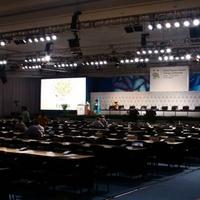 Cancuni mérleg: fő tények és reakciók