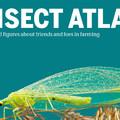 A rovarok globális összeomlását az iparszerű mezőgazdaság okozza – mutat rá a Rovar Atlasz