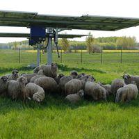 Sikeres hazai kistelepülések a fenntarthatóság felé - mi a receptjük?