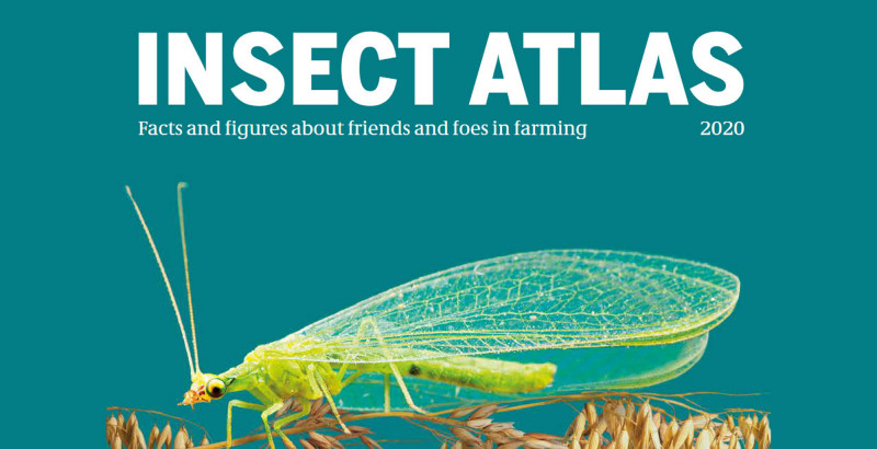 insectatlas2.jpeg