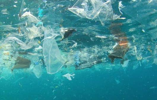 mikro műanyag ivóvíz