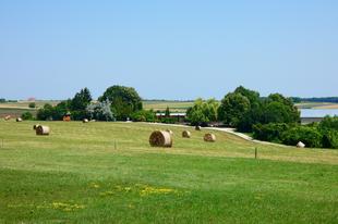 Látogatás a balácai római kori villagazdaságban