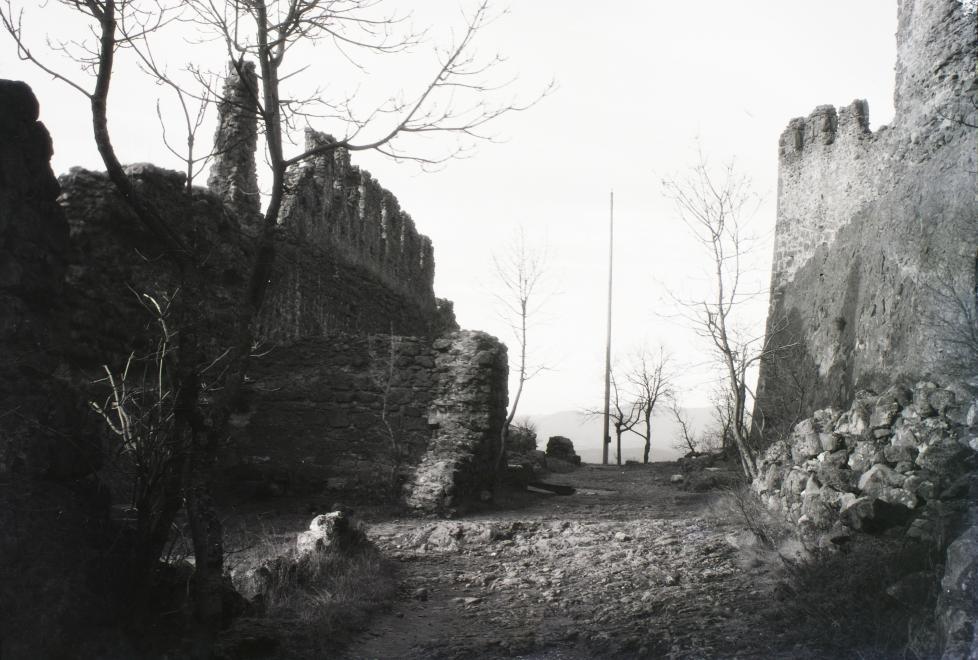 schermann_akos_1929.jpg