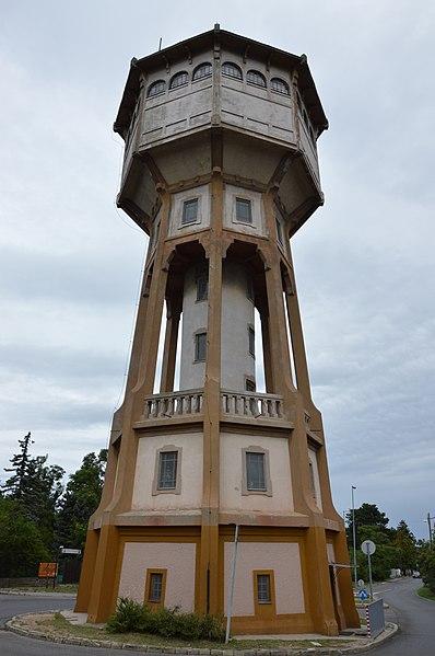 wikimedia_commons2.jpg