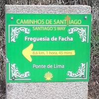 Portugál Camino 3. nap: Portela - Ponte de Lima (24,2 km)