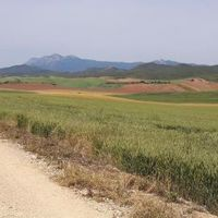 El Camino 2016., 6. nap - Estella - Sansol - 28 km