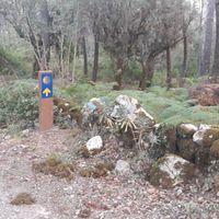 Portugál Camino 2018. 3. nap: Ansiao - Conimbriga (21,2 / 28,7 km)