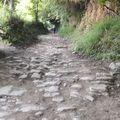 El Camino 2016, 28. nap: La Faba - Fonfría - 17,1 km