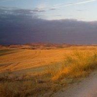 El Camino 7. nap: Los Arcos - Logrono (29 km)