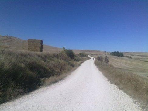 El Camino 405_1.jpg