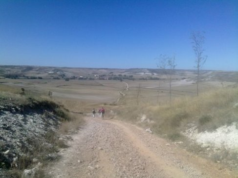 El Camino 411_1.jpg