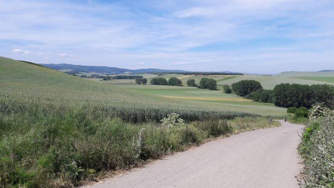 El camino, szép táj