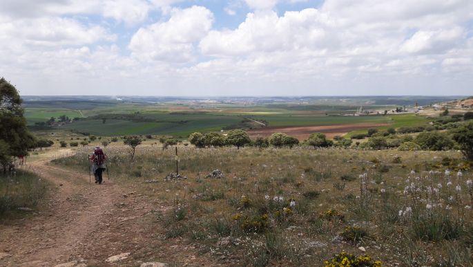 El camino, ellátni egészen Burgosig