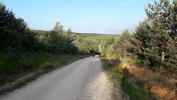 El camino, út San Juan de Ortega felé