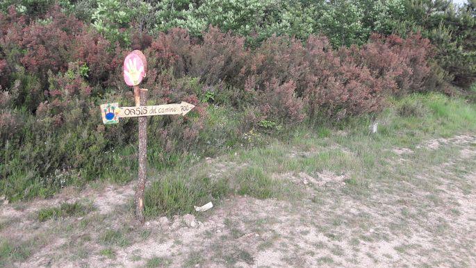 El camino, út San Juan de Ortega felé, már csak 700 méterre az oázistól