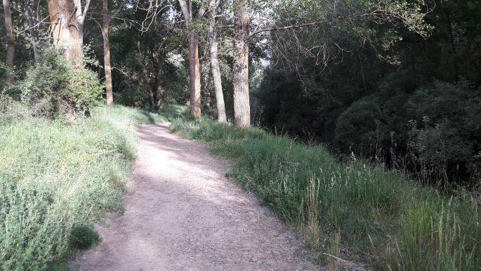 El camino, az út Burgos felé