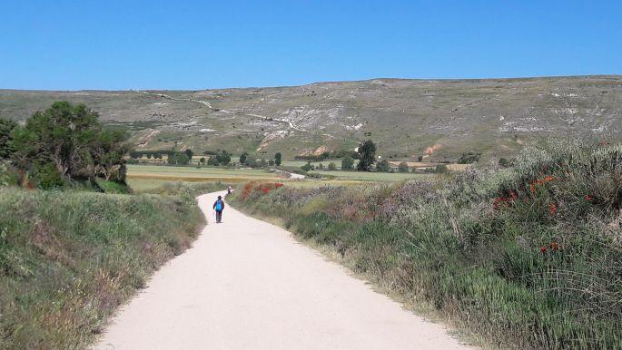 El camino, úton az Alto de Mosterales felé