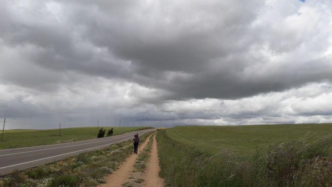 El camino, úton Carrion de los Condes felé