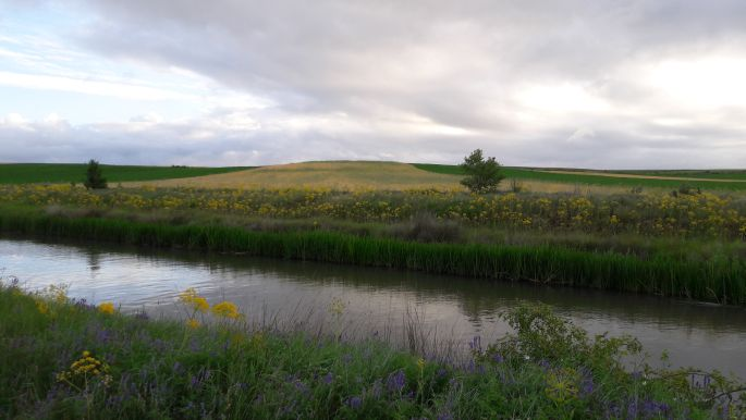El camino, Canal de Castilla