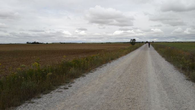 El camino, út a Mesetán