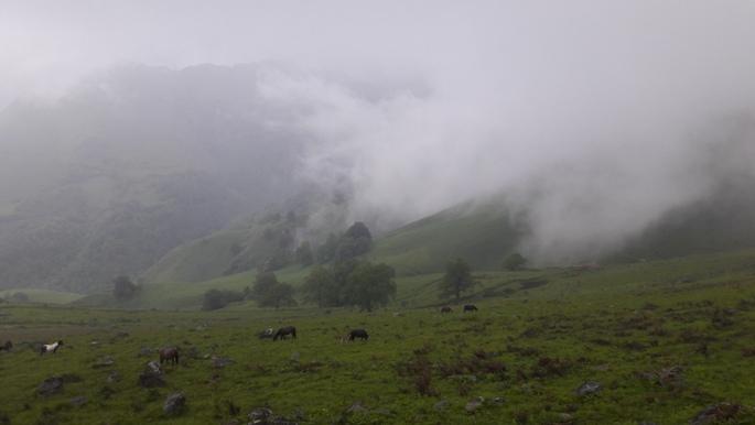Pireneusok. Felhők között jártunk.