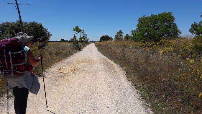 El camino, az árnyék nélküli út