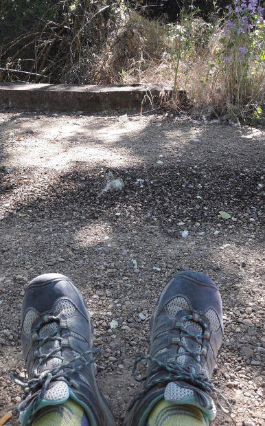 El camino, pihenő egy kis patak felett, plusz a túracipőm az út porával :-)