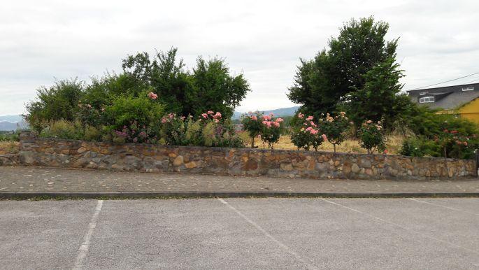 El camino, az emlékezetes pihenőhely, ahol piknikeltünk a spanyol szüretelőkkel