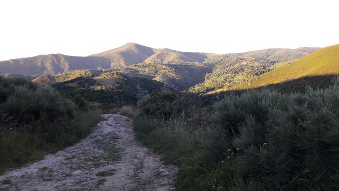 El camino, galíciai táj