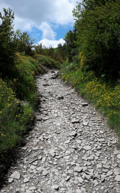El camino, meredek köves út.