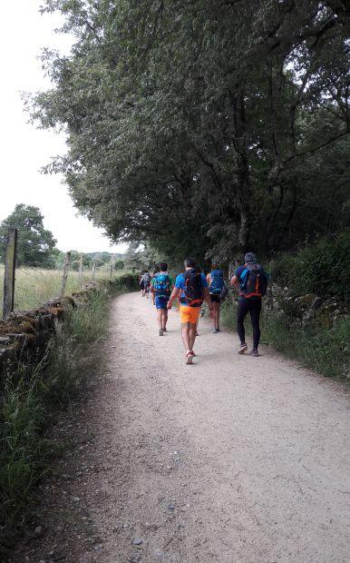 El camino, út egyre több zarándokkal az utolsó 100 km-en belül