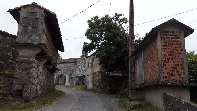 3_el_camino_galicia.jpg