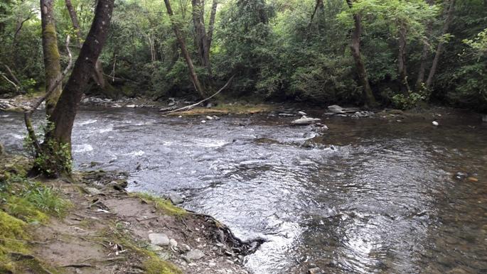 A folyópart Andrea nélkül 2016-ban.