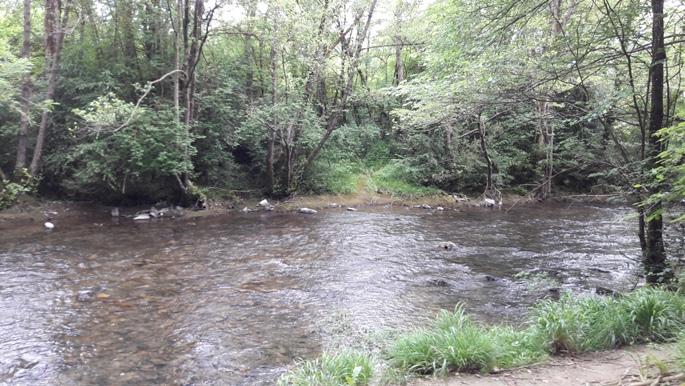 A folyó csak úgy a maga szépségében.
