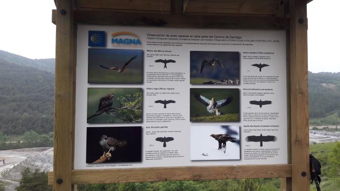 A környéken őshonos madárfajok.