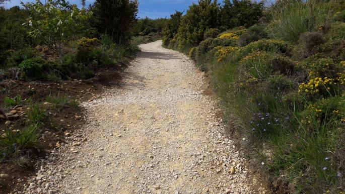 El camino, úton az Alto del Perdón felé