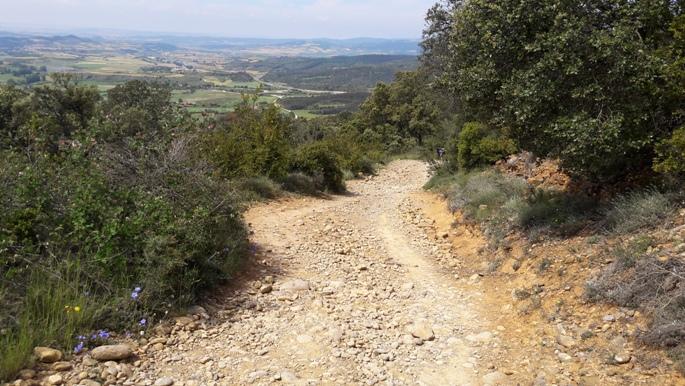 El camino, lefelé az Alto del Perdón hegyről. itt már kiderült, hogy csupán az első 200 métert javították.