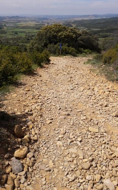 El camino, lefelé az Alto del Perdón hegyről. Az első 200 métert leszámítva végig ilyen köves út vezetett le a völgybe.