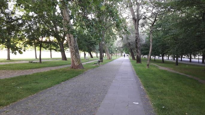 El camino, Pamplona kivezető út