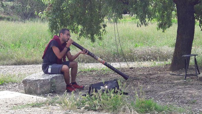 Frederico és a didgeridoo