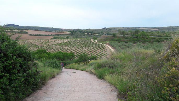 El camino, út a dombok között