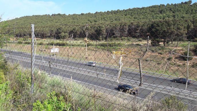 Keresztek az autópálya melletti kerítésen