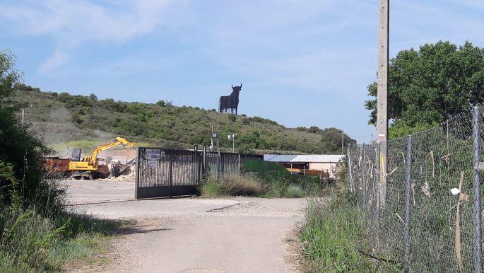 A büszke spanyol bika a távolban