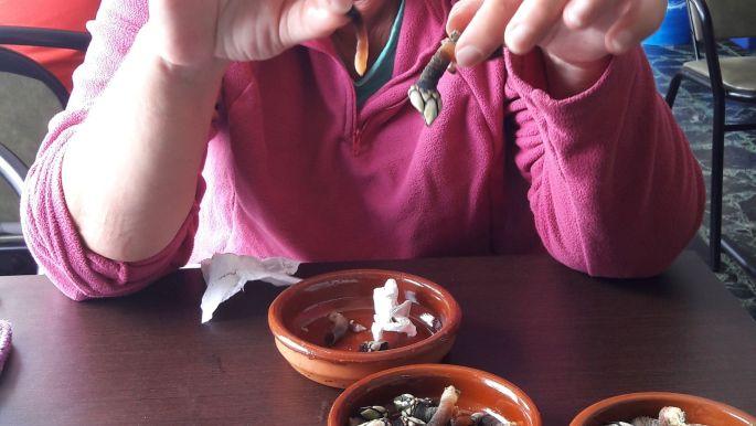 El camino, Muxia, a kacsakagyló lógója..., egyelőre erőt gyűjtök.. :-)