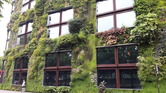 Ez a növényekkel benőtt ház nagyon tetszett nekem Párizsban!